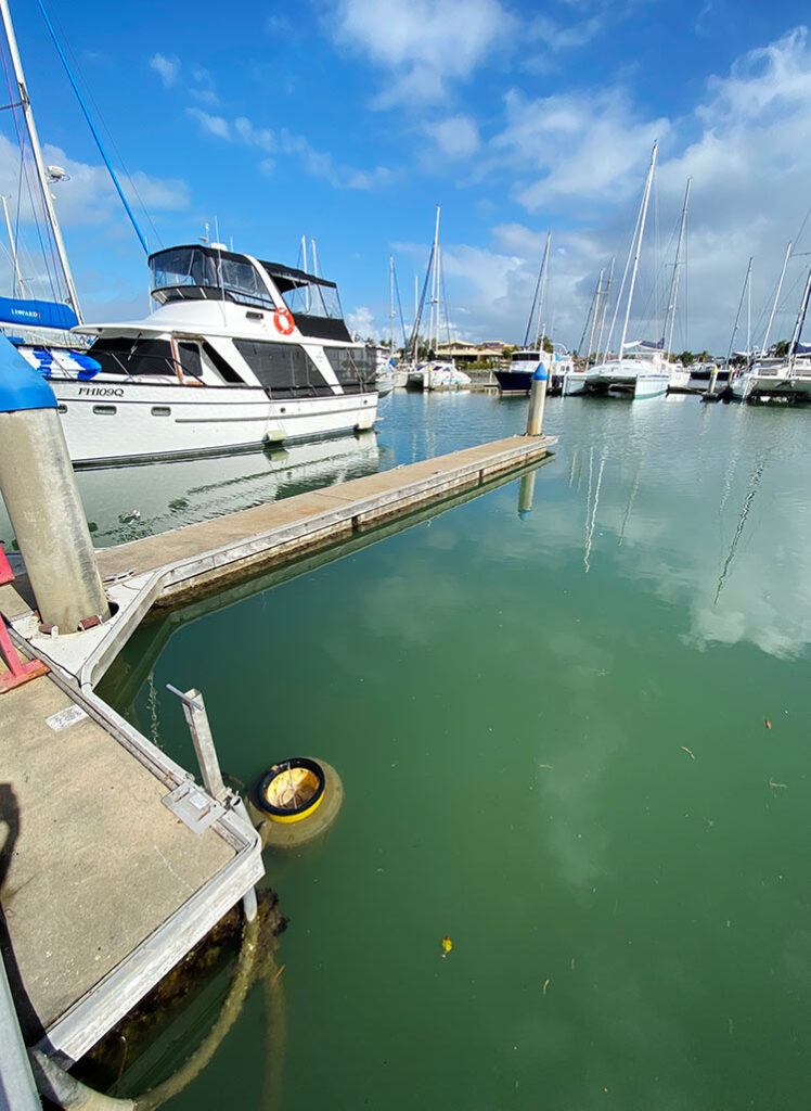 One of the three Seabins installed at Newport Marina QLD